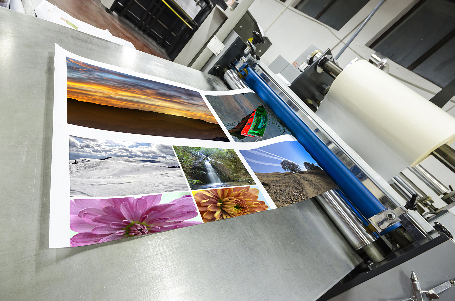 Color printing colorado springs - Home_image1